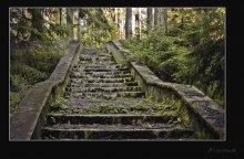 Заброшенная лестница / Бывший дом отдыха писателй под Раковом. Снимал со штативом  в RAW-формате, сделал 3 снимка, свел в один.