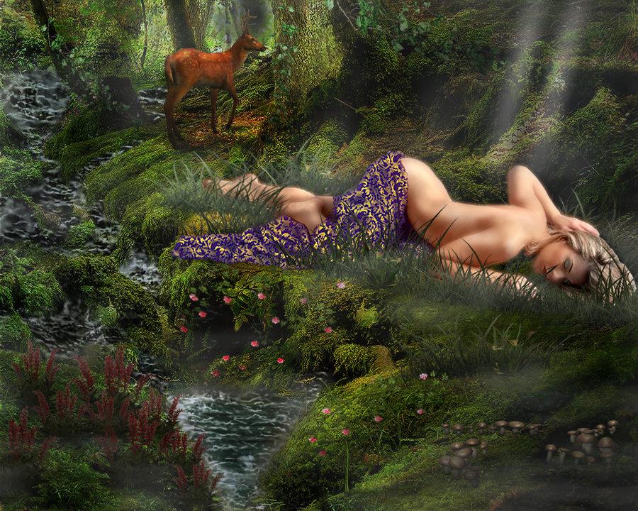 La bella adormentata nel bosco