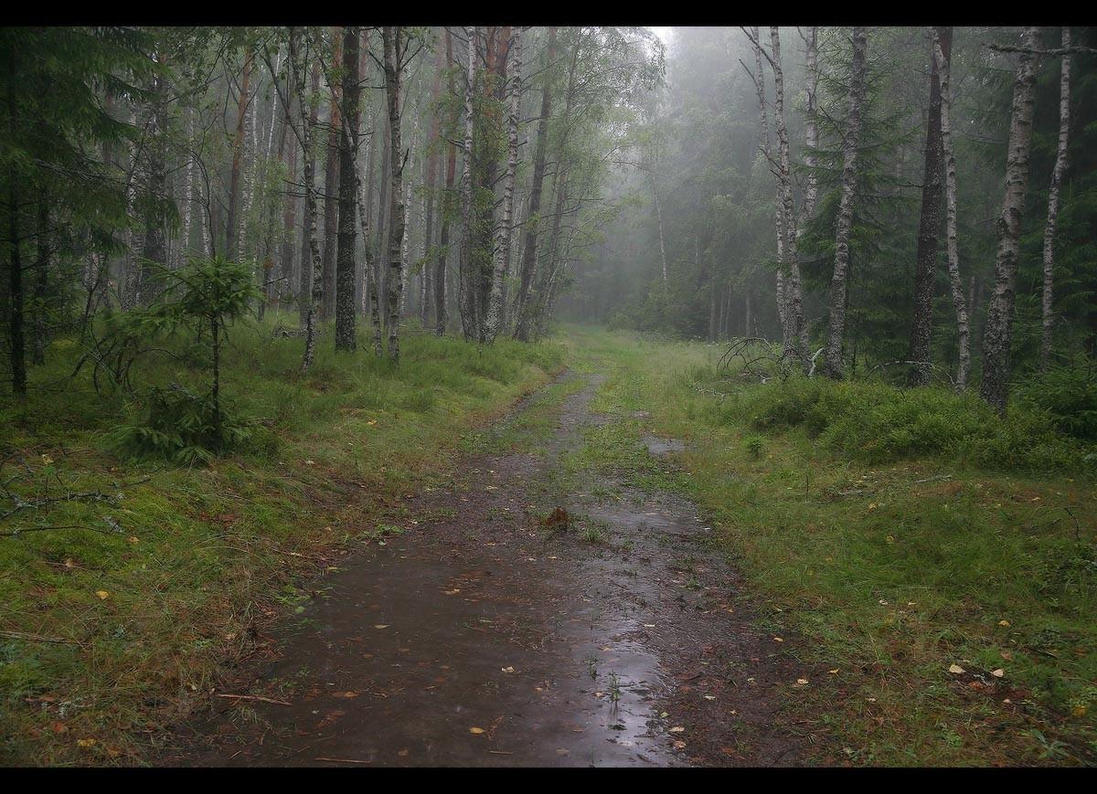 Картинки гроза и дождь