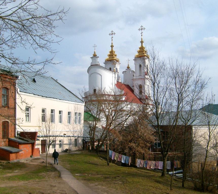 golaya-nastya-zadorozhnaya-v-dushe-foto