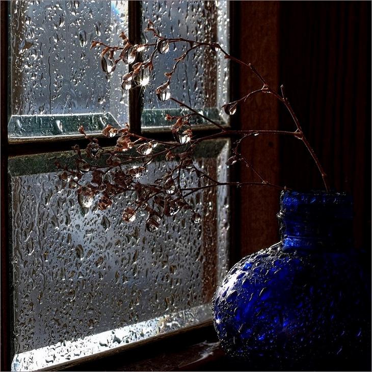 "Натюрморт дождя / ""погода в доме"""