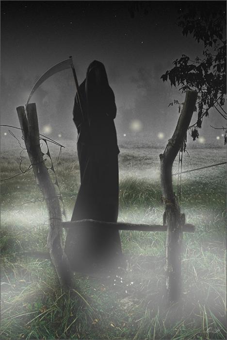 Ночь.Кладбище.Тропинка