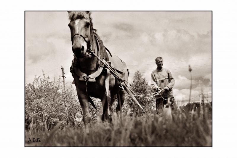 Пахарь / Деревенское утро / Автор: Pintzet