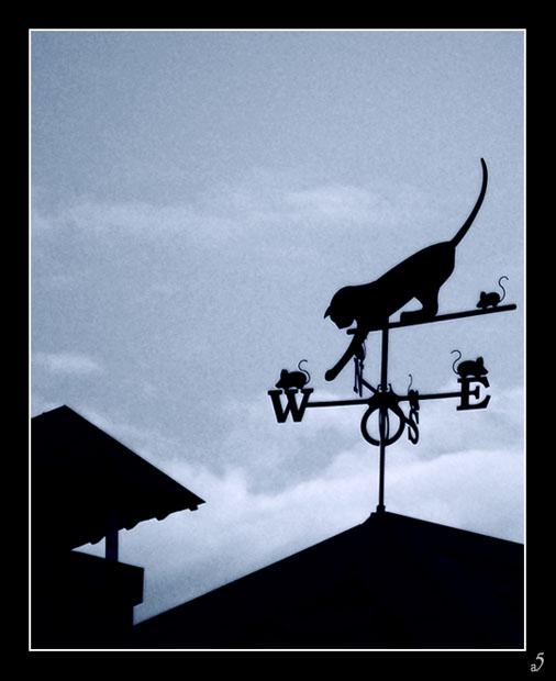 флюгер лев фото