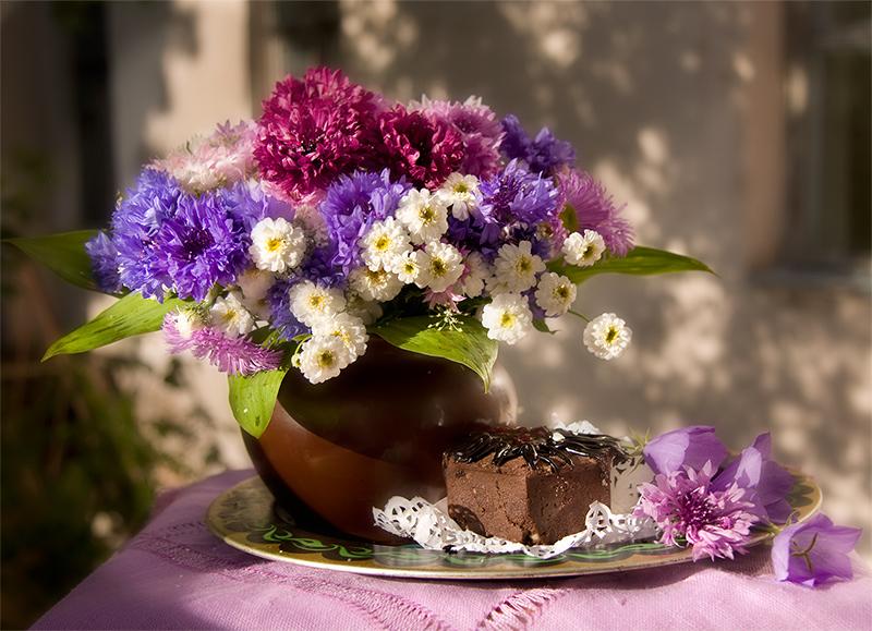 Васильки садовые фото цветов - 98de