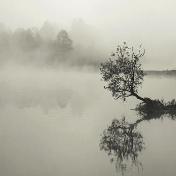 Утро реки
